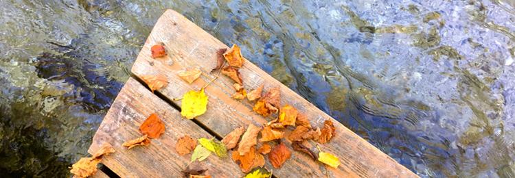 Gruenaubach-Herbst